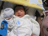 2011.8.17小兔比誕生辣:1049199076.jpg