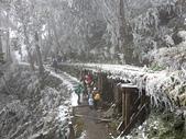 太平山的雪白世界:20180113_113234.jpg