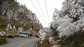 太平山的雪白世界:P_20180113_151033.jpg