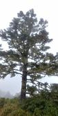 2019雪山主東峰跨年:20181231_150001_HDR.jpg