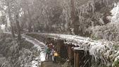 太平山的雪白世界:P_20180113_113245.jpg