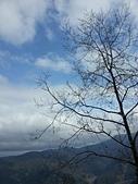 太平山的雪白世界:20180113_105508.jpg
