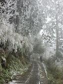太平山的雪白世界:20180113_111404_HDR.jpg