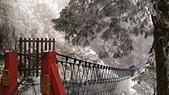 太平山的雪白世界:P_20180113_115035.jpg