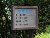 走跳東台灣~宜蘭篇:12.jpg