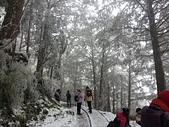 太平山的雪白世界:20180113_113726.jpg
