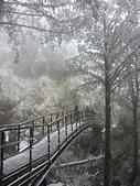 太平山的雪白世界:20180113_120140.jpg
