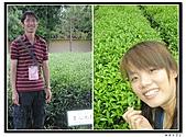 99年天福茶作旅:茶博物院1.jpg