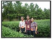 99年天福茶作旅:茶博物院18.jpg