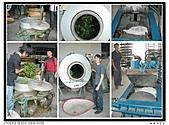 99年天福茶作旅:日進茶廠體驗6.jpg