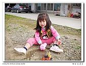 99冬茶香:nEO_IMG_DSCN9923-1.jpg
