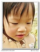 99冬茶香:nEO_IMG_DSCN9926-1.jpg