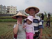 2008-11-08台中霧峰收割+科博館+精明一街:DSCN1017.JPG
