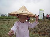 2008-11-08台中霧峰收割+科博館+精明一街:DSCN1018.JPG