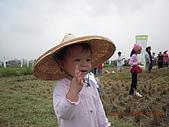 2008-11-08台中霧峰收割+科博館+精明一街:DSCN1019.JPG