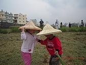 2008-11-08台中霧峰收割+科博館+精明一街:小弟弟不要生氣