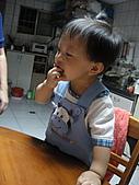 DD-1Y3M:小饅頭1Y3M_003.JPG