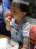 DD-1Y3M:小饅頭1Y3M_008.JPG