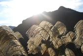 南子吝、石梯坑山、南雅奇岩:DSC_6430.JPG