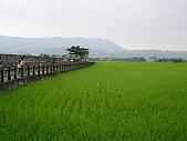 關山環鎮自行車道:PA070515