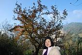 杉林溪景點&鹿谷鄉內湖國小:DSC_2481.JPG