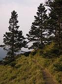 合歡北峰、西峰:P3310084