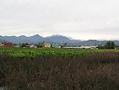 5.阿滿姨庄腳菜(澀水社區)、台一種苗場:P6101707