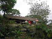 會走路的樹~巒山部落:P3220310
