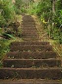 桃源谷步道-大溪線、草嶺線:PB050018