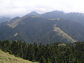 合歡北峰、西峰:P3310266