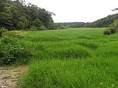 南仁湖、龍坑、台東利嘉(Day 2 墾丁、台東):P3210576