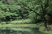 夢湖:DSC_4950.JPG