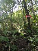 拉拉山、塔曼山:P2220578
