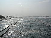 龍洞南口(濱海92K 大浪來襲):P7140054