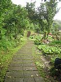 桃源谷步道-大溪線、草嶺線:PB050010