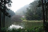 杉林溪景點&鹿谷鄉內湖國小:DSC_2522.JPG
