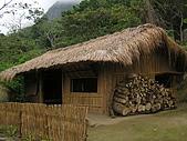 會走路的樹~巒山部落:P3220298