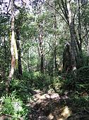 松蘿湖:P8260023