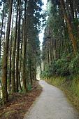 杉林溪景點&鹿谷鄉內湖國小:DSC_2523.JPG