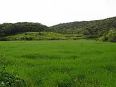 南仁湖、龍坑、台東利嘉(Day 2 墾丁、台東):P3210579