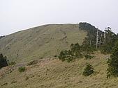 合歡北峰、西峰:P3310170