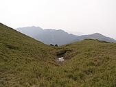 合歡北峰、西峰:P3310186