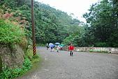 茶山古道->林家古厝->猴山岳:DSC_0031