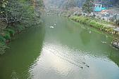 杉林溪景點&鹿谷鄉內湖國小:DSC_2528.JPG