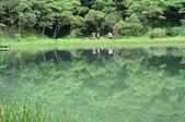 夢湖:DSC_4953.JPG
