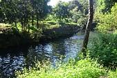 新山 夢湖:DSC_1004.JPG