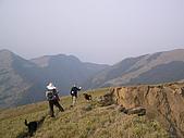 合歡北峰、西峰:P3310089