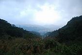 茶山古道->林家古厝->猴山岳:DSC_0036