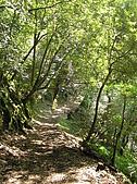 拉拉山、塔曼山:P2220547