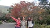 天母古道-七星公園:CIMG3608.JPG